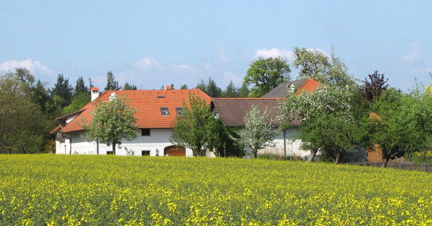 Bekanntschaften in Grieskirchen - Partnersuche & Kontakte